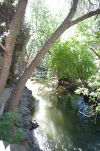 Crawdad Canyon